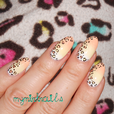 Candycornleopard3 thumb370f