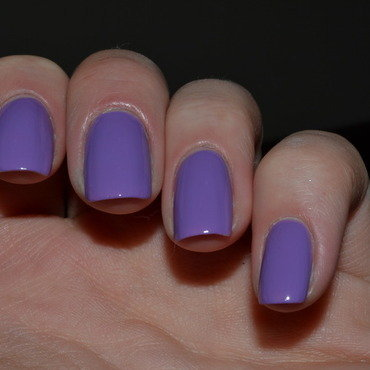 Rimmel London Wild Orchid Swatch by Svetlana Tsad