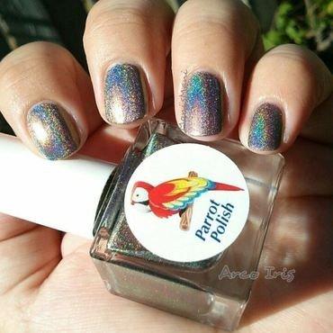 Parrot Polish arco iris Swatch by Moni'sMani
