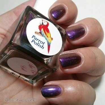 Parrot Polish arc en ciel Swatch by Moni'sMani