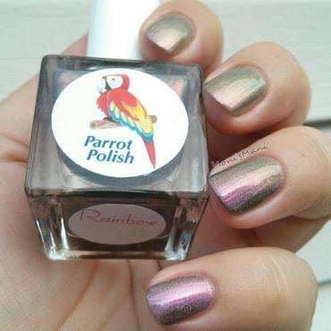 Parrot Polish rainbo Swatch by Moni'sMani
