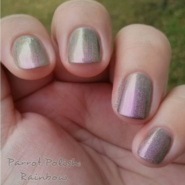 Parrot Polish rainbow Swatch by Moni'sMani