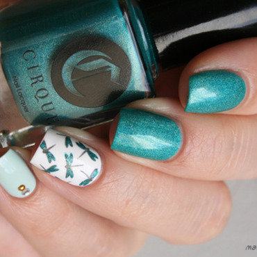 Cerrillos et libellules nail art by Mary Monkett