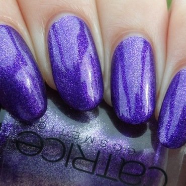 Catrice Forget-Me-Not! Swatch by Plenty of Colors