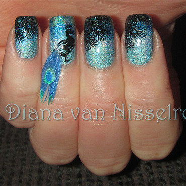 Real feathered Peacock nail art by Diana van Nisselroy