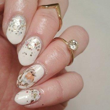 winter robin  nail art by Charlotte