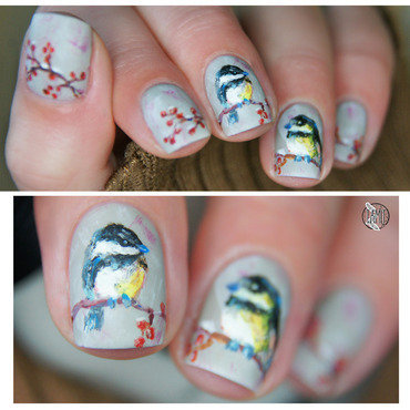 Winter birds nails nail art by Paulina