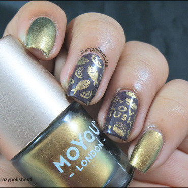 Moyou 20london 20stamping 20polish 20ginger 20rust 20 thumb370f