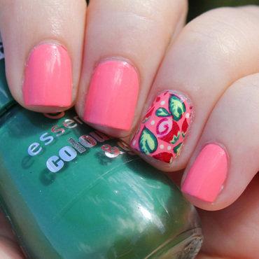 Roses thumb370f