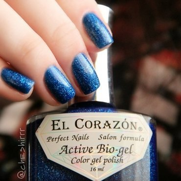 El Corazon Large Holo 423/502 Ocean Swatch by cheshirrr