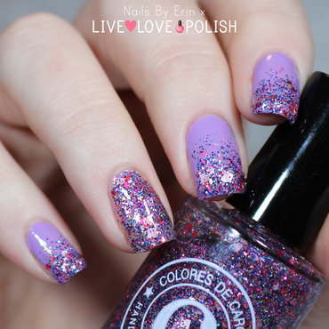 LVX Aster and Colores De Carol Jesse's Girl Swatch by Erin