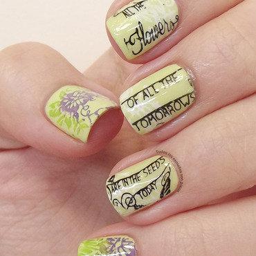 Manicura primaveral bq 024 nail stamping plate todos los esmaltes son pocos 2 thumb370f