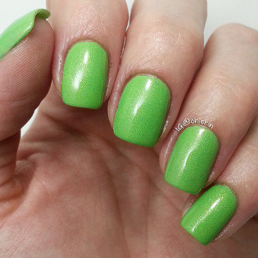 Model City Polish Hellebore Swatch by Lindsay