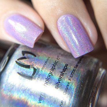Lmcosmetic Silvershape Swatch by Lizana Nails