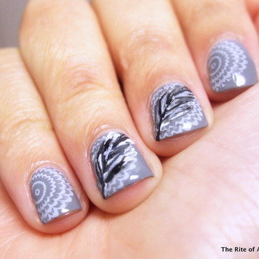 Stamping and Feather Nail Art nail art by Monica