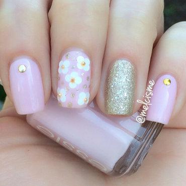 Daisy pink thumb370f