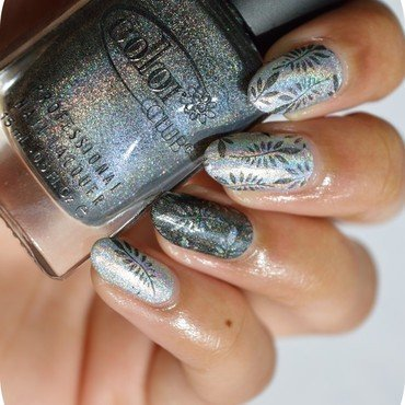 Stamping 20tout 20holo 20 5  thumb370f