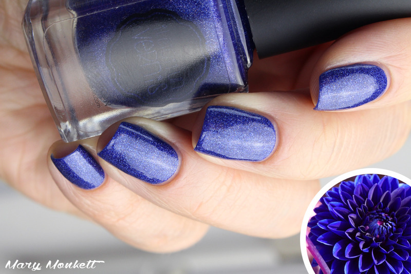 Il était un vernis dahlia Swatch by Mary Monkett