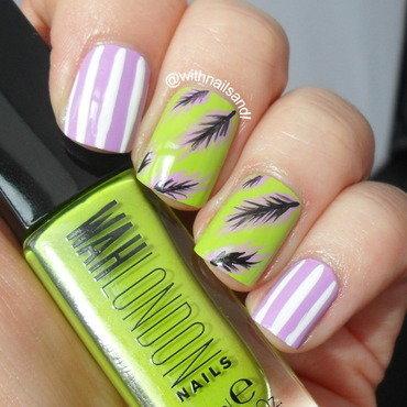 Feathers2 thumb370f