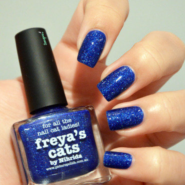 piCture pOlish Freya's Cats Swatch by Sweapee