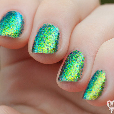 Ilnp open fields h 5 thumb370f