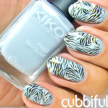 Gradient Zebra Stamping Nails nail art by Cubbiful