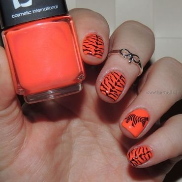 Poor little Zebra among the Tigers nail art by Ka'Nails
