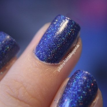 ILNP Honor Roll Swatch by katharinapeskelidou