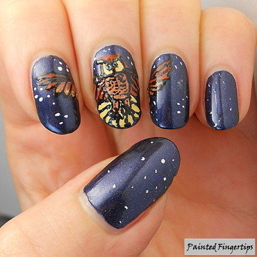 Night sky owl thumb370f