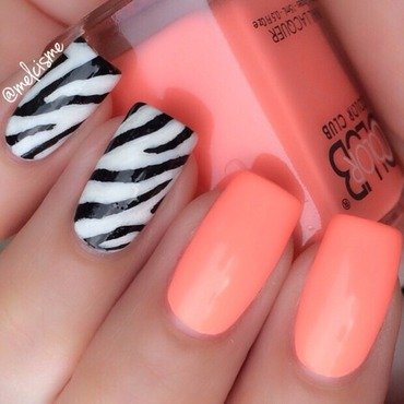 Zebra & Neon nail art by Melissa