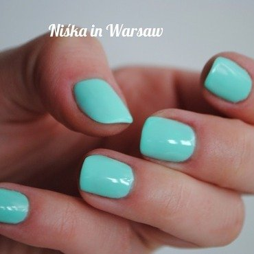 Neo Nail 3754 Summer Mint Swatch by Niska