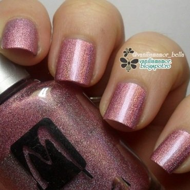 Moyra Holographic 256 Swatch by Isabella