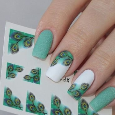 Fabulous Green Peacock Feather Water Decals Manicure nail art by Born Pretty