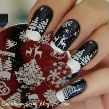 Winter is coming! nail art by Cranberry Fairy