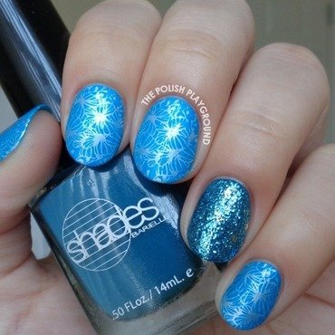 Bright Blue and White Butterfly Clusters Stamping nail art by Lisa N