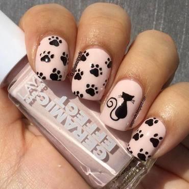 Probando la Placa BP-X11 Gatos&Paticas! ♥ nail art by Isabel