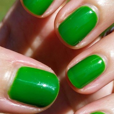 Wet n Wild Lean and Green Swatch by Hermine