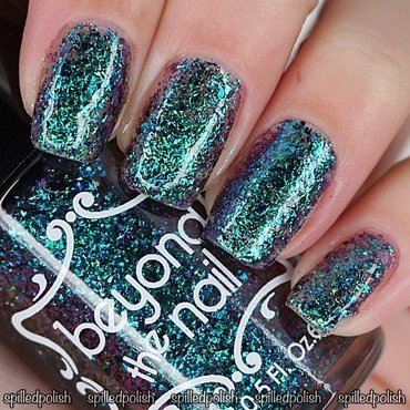 Beyond The Nail Shut the Front Door Swatch by Maddy S