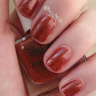 Polish Alcoholic Pumpkin Mash Swatch by Raindrop