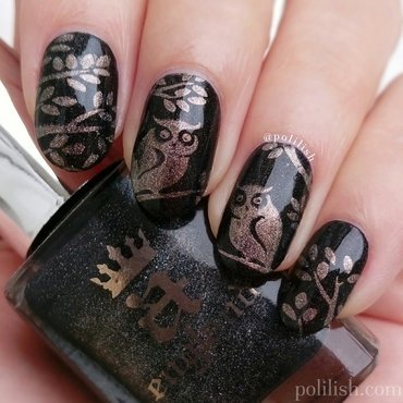 Owl nails nail art by polilish