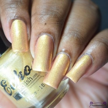 Echoes Polish Canuck Box Swatch by glamorousnails23