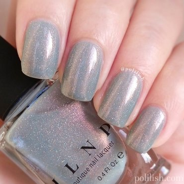 ILNP Clever Girl Swatch by polilish