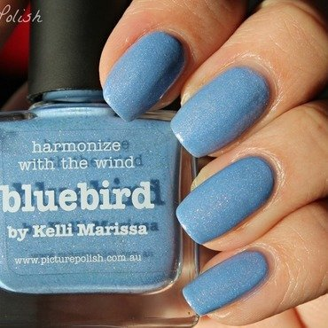 piCture pOlish Bluebird Swatch by Kay's Polish