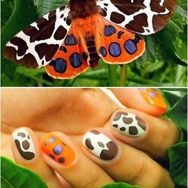 Moth Inspired Nails! nail art by Gabrielle