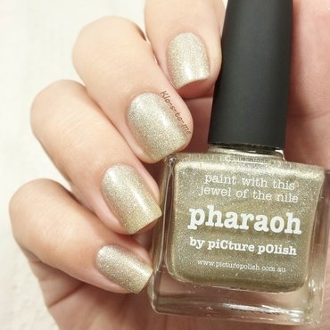 20160101 picture 20polish 20  20pharaoh 20  20 thumb370f