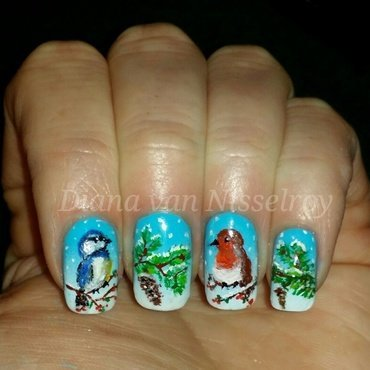 Winter birds nail art by Diana van Nisselroy