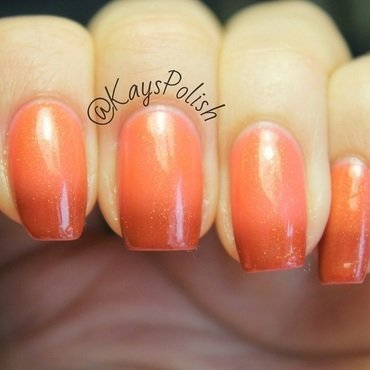 Bio Seaweed Gel Venus Swatch by Kay's Polish
