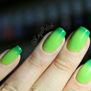 Bio Seaweed Gel Earth Swatch by Kay's Polish