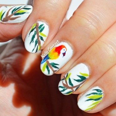 Pretty Parrot nail art by NailsContext