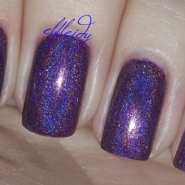 ILNP Kings and Queens Swatch by Jenette Maitland-Tomblin